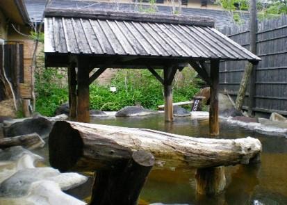 神奈川県川崎市<br>川崎縄文温泉「志楽の湯」
